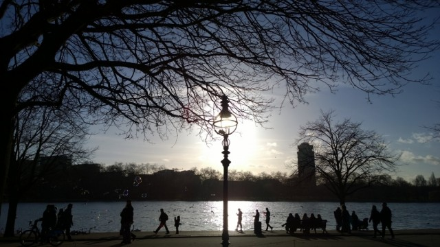 Silhouettes at Hyde Park