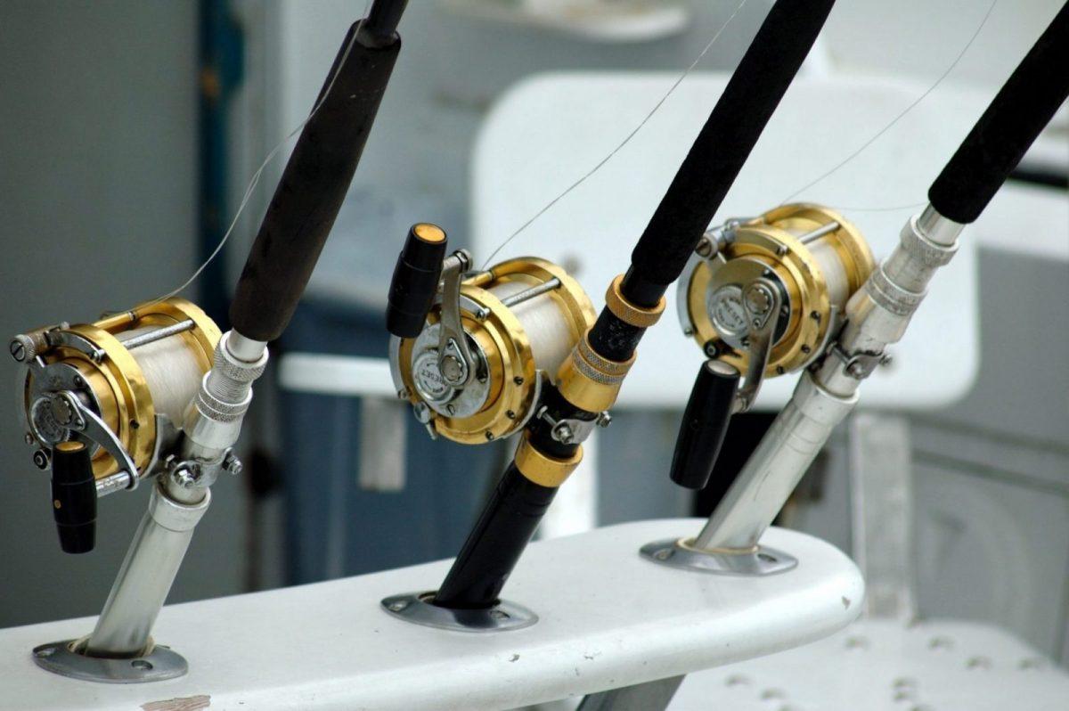 angler-angling-close-up-209810