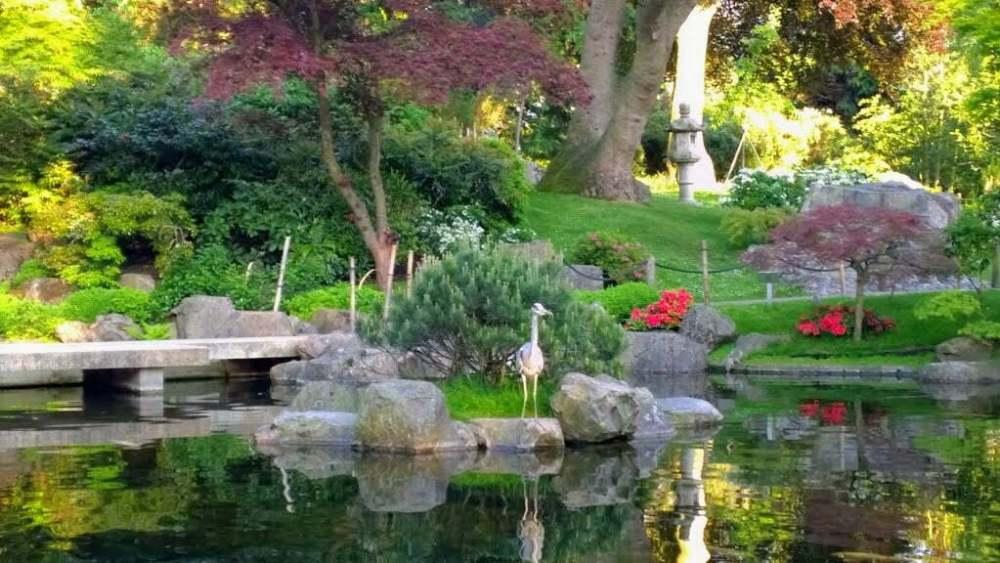 Kyoto Garden in Photos: A Secret Japanese Garden in Holland Park 14