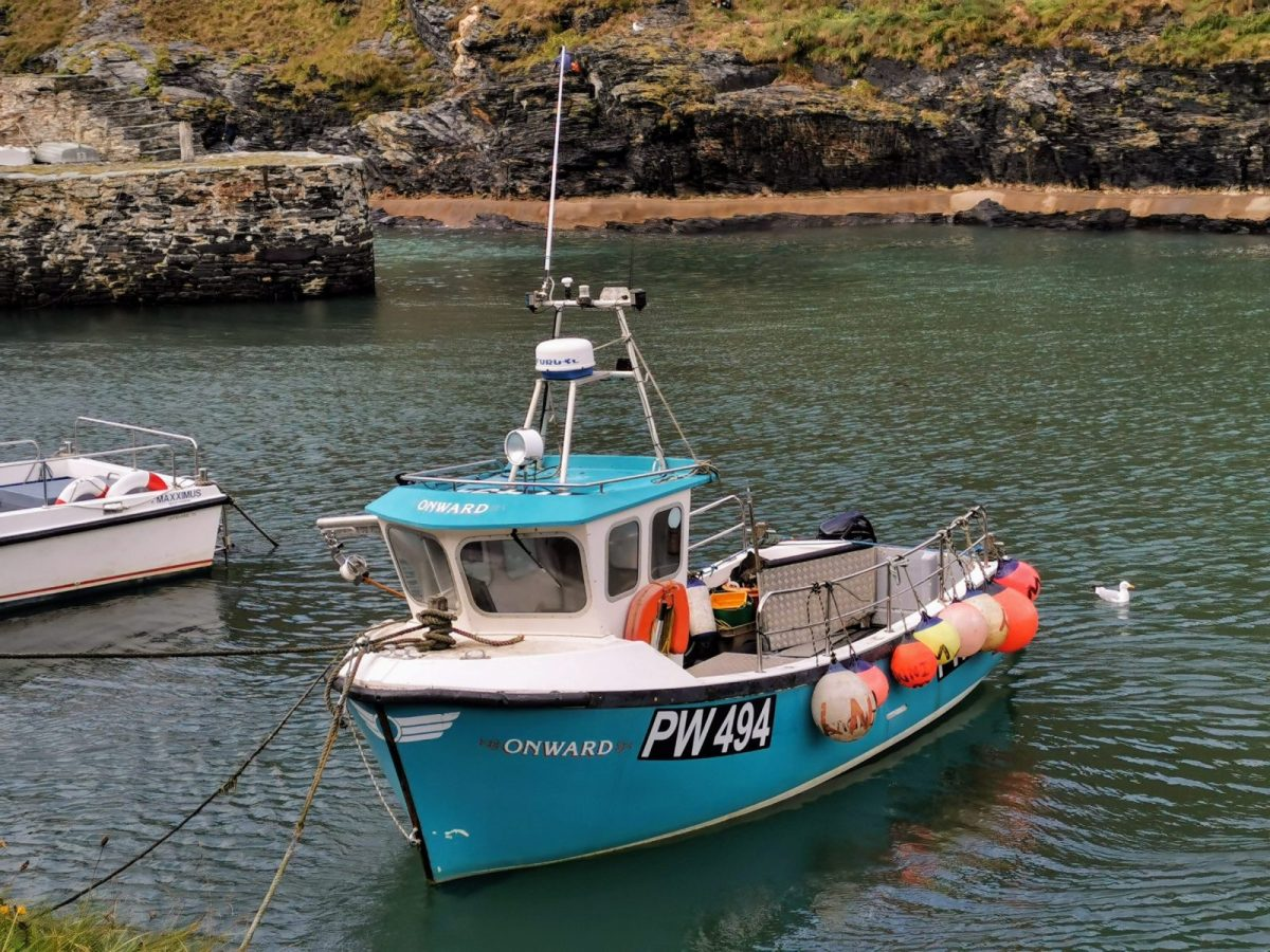 Boscastle Harbour: Photo Gallery 16