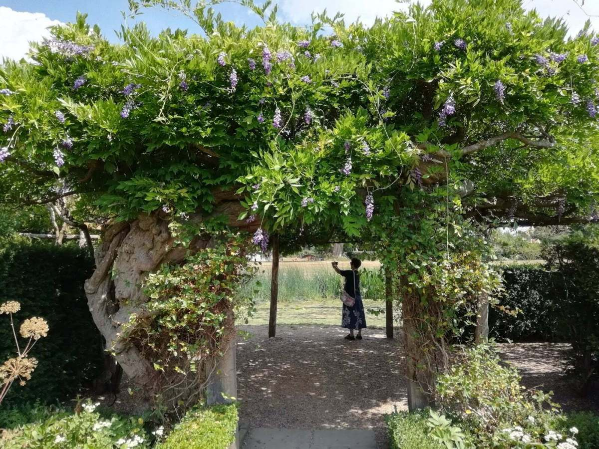 Best Things to See and Do at Hever Castle & Gardens: In Photos 21