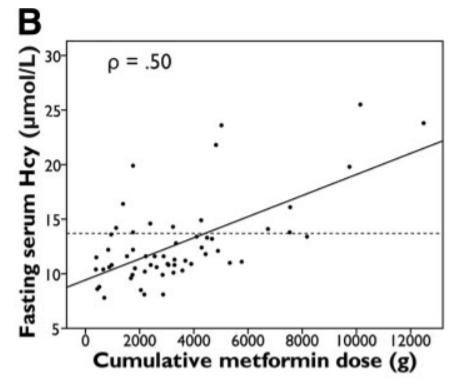 metformine homocysteine ampk