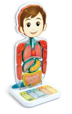 oregon-anatomy-learning