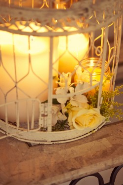 Decorated Bird Cages For Weddings