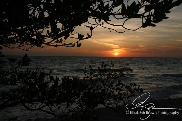 Sunset, Honeymoon Island State Park, Dunedin, FL