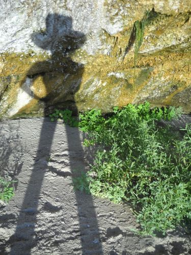 montague_shadows01_10