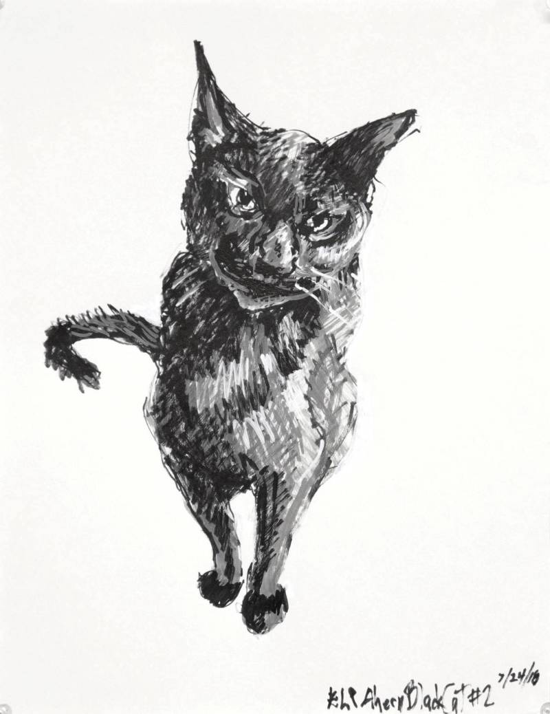 Black white and grey paint pen drawing of a seated black cat on a white ground. Seen from the front with tail curled to side.