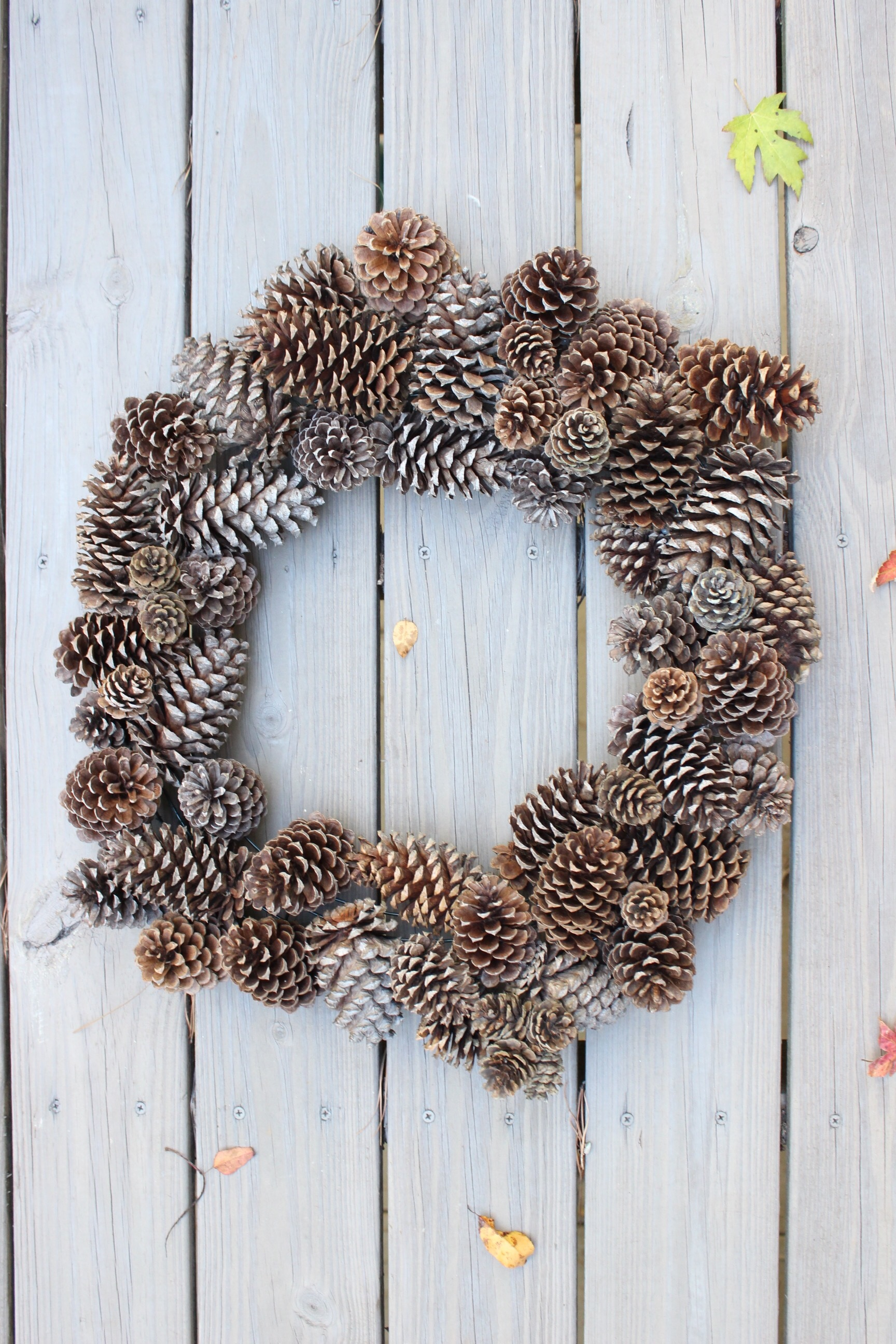 Diy Pinecone Wreath Elizabeth Spencer Davis