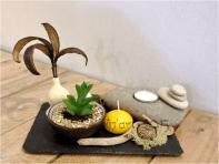 Composition végétale par Eliz'art ( ardoise, galets, végétaux séchés, bois flotté, lichen, succulente)