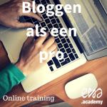 online training bloggen als een pro