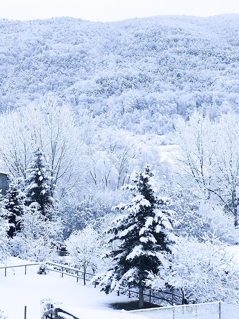 El Jardí_nieve 4