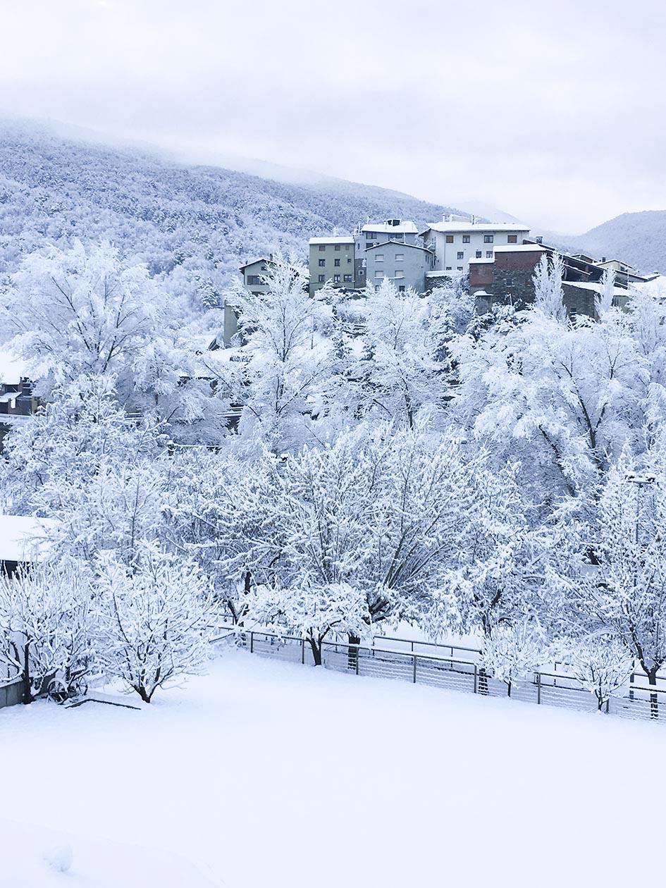 El Jardí_nieve 6