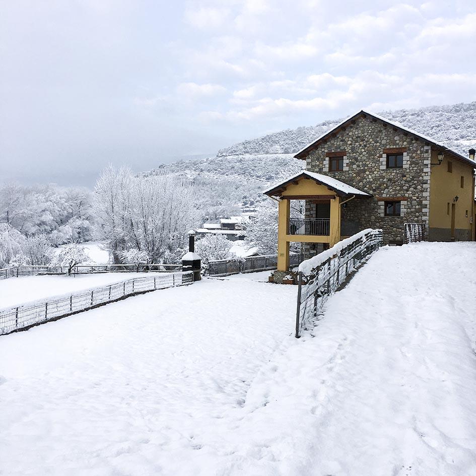 El Jardí_nieve 7
