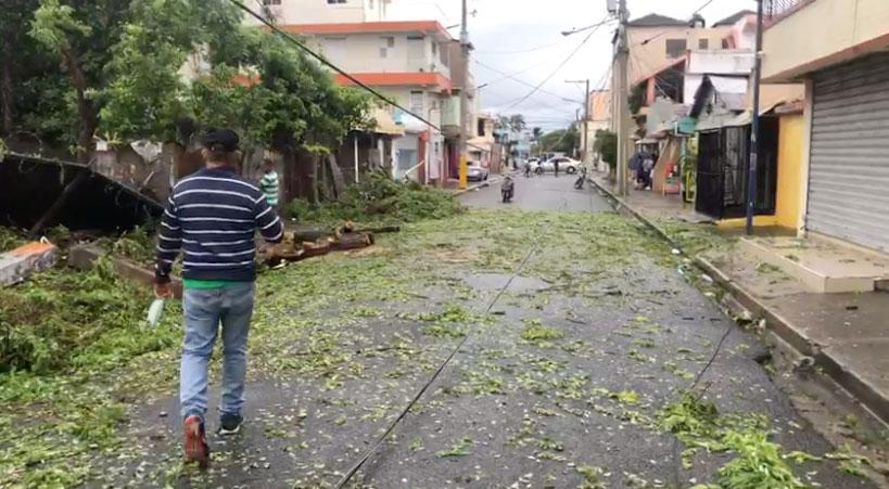 En la calle Gregorio Rivas esquina Gaspar Hernández, un árbol cayó al suelo por los fuertes vientos provocados por el paso de la tormenta, lo que provocó daños en un tendido electrico.
