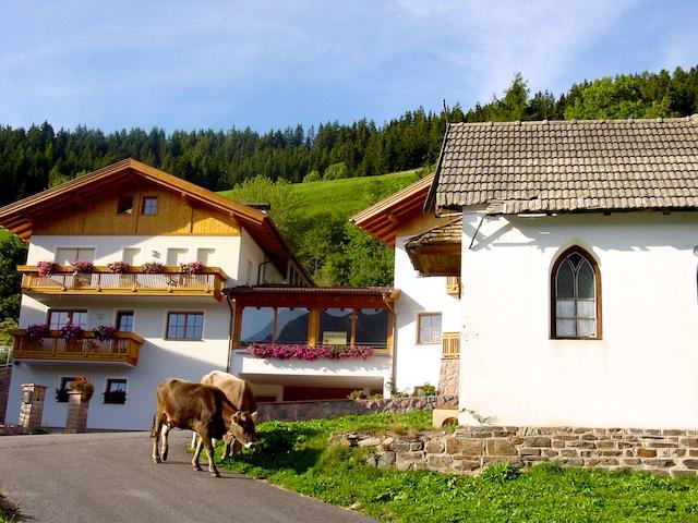 Bauernhof Suedtirol (1)