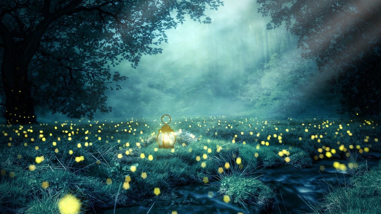 Glühwürmchennächte Ein Gedicht Zum Juni Elkes
