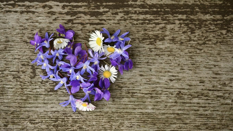 Poetisches Blumenmärchen