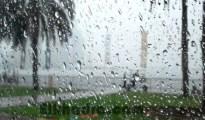 Météo Algérie :Pluies orageuses attendues sur 7 wilayas du Centre et de l'Est du pays 18