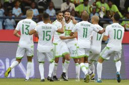 """نتائج """"الخضر"""" تحت قيادة بلماضي قبل كأس أمم إفريقيا 34"""