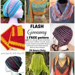 Flash Giveaway Blog Hop!