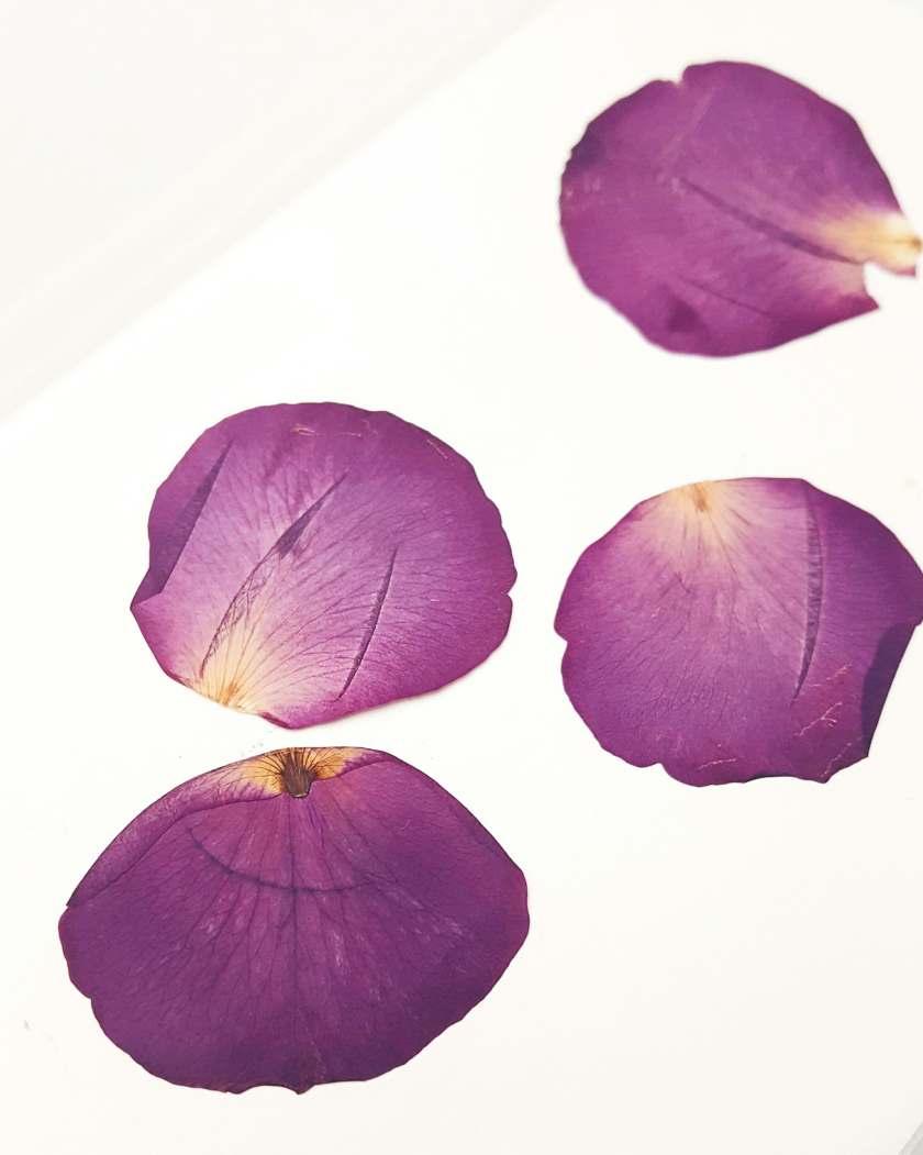 rosenblätter getrocknet diy ohrringe