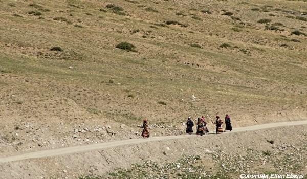 Pilgrims returning to Darchen after walking the kora around Mount Kailash (2010)
