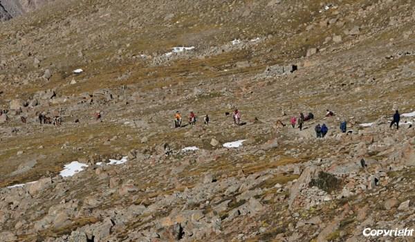 Day 2 of the kora: pilgrims ascending to Drolma La pass (2010)