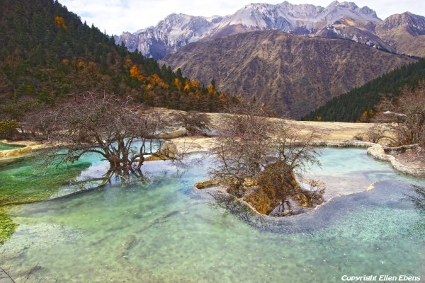 Huanglong National Park: Azalea Pond