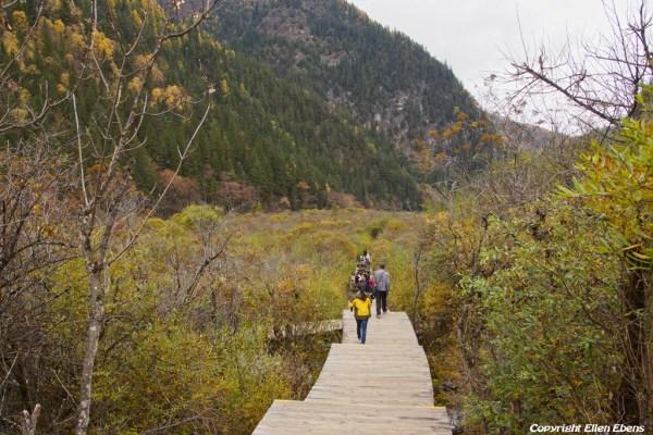 Walking from Arrow Bamboo Lake to Panda Lake at Jiuzhaigou National Park