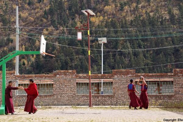 Young monks enjoying a game of basketball. Kyangtsang Monastery, Shanba village (near Songpan)