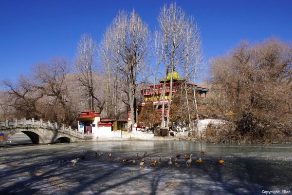 Lhasa, The Lukhang (Naga temple) in the lake behind the Potala Palace.
