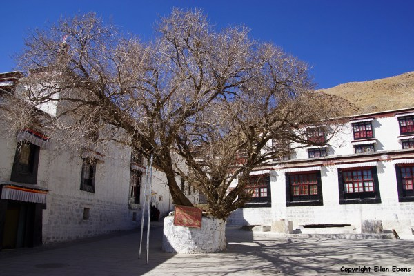 Inside Tashilhunpo Monastery, Shigatse