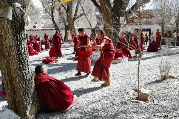 Debating monks at Sera Monastery