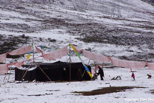Kham snow nomad tent