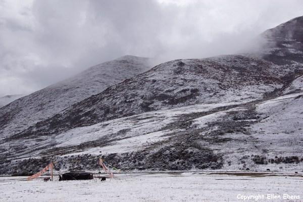 Kham snow nomad tent yaks