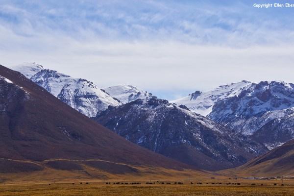 Yushu landscape