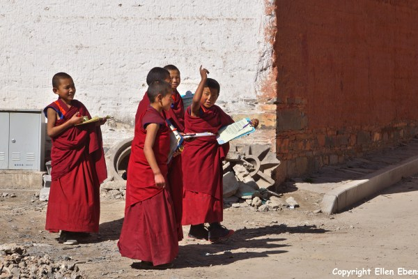Xiahe Labrang Monastery young monks