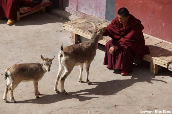 Nangchen Gar Monastery