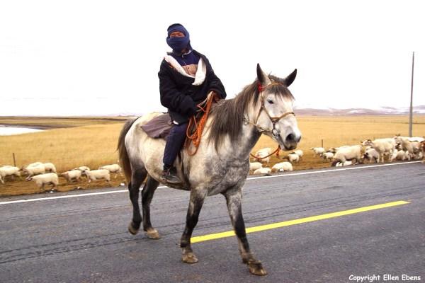 Xiahe to Tangke Tibetan cowboy