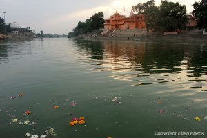 Flowers in the river in the centre of the city of Ujjain
