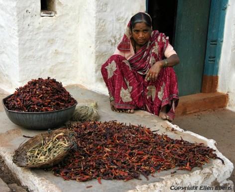 Drying chilli, Badami