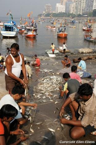 Fishermen in Mumbai