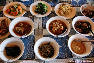 Bagan, Burmese curries for lunch