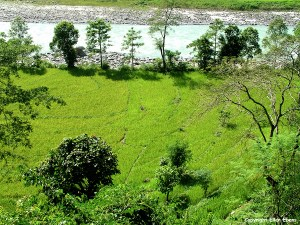 Sikkim Teesta River