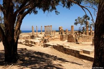 Libya Ptolemais