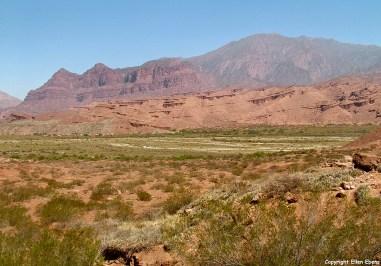 Argentina, Quebrada de Cafayate