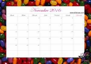 Calendrier Novembre 2016 Ellia Rose