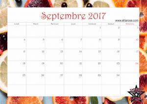 calendrier-2017-ellia-rose-agrumes-septembre