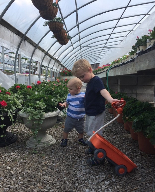 Day In The Life – April 2017   Ellie And Addie