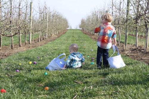 Easter at Eckert's | Ellie And Addie